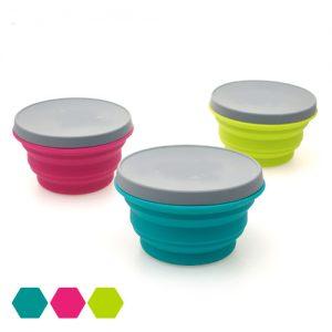 Foldable Bowl