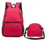 Lutz 2 in 1 Bag
