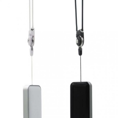 Speaker with speakerphone