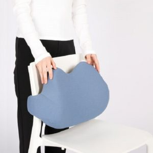 Singapore Supplier Memory Foam Backrest Pillow Cushion