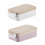 Singapore Promotional Plastic Lunch container